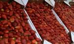 StrawberryCU1